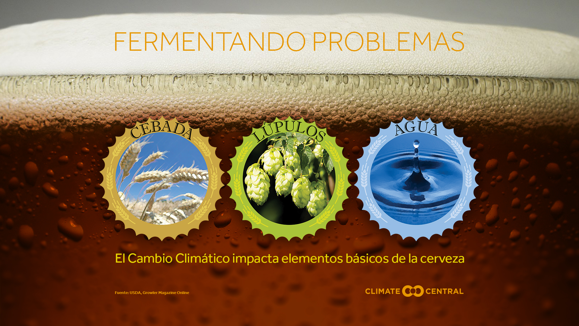 how climate change impacts beer - national